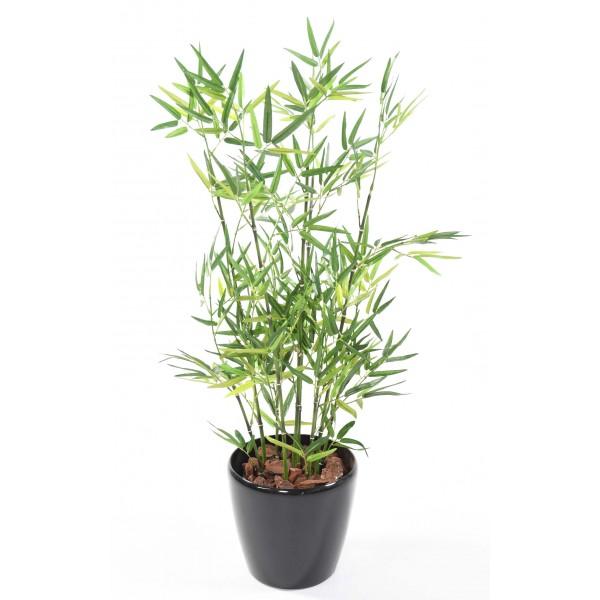 bambou-en-pot-rond